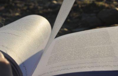 Spéciale lecture en pleine air
