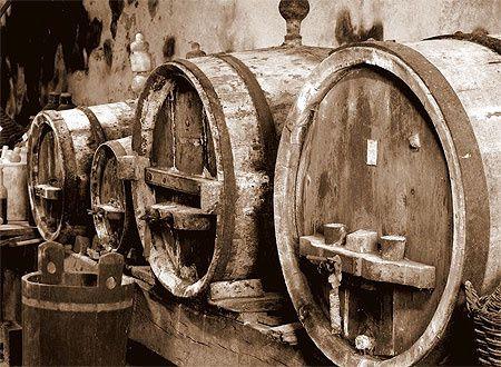 Le vin et ses citations