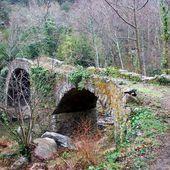 Pont et bois - Autour de