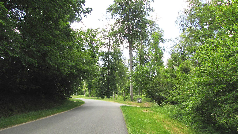 carrefour_Route des Brioleurs (D547)_Route de l'Ortille