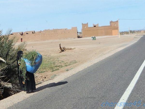 RN9 Zagora-Mhamid (Maroc en camping-car)