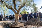 Nice: Travaux d'aménagements du Grand Parc de l'Ouest