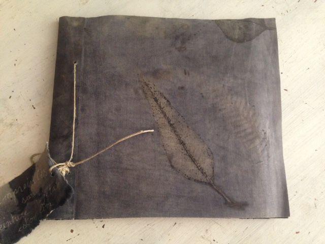 initiation empreintes botaniques sur papier