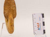 """F00689 (8.5cm) - Phylloceras sp. (P. hindermeyeri ?) - Référence / reference: B. Joly, 1976, """"Les phylloceratidae malgaches au jurassique: généralités sur les Phylloceratidae et quelques Juraphyllitidae."""""""