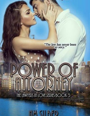 Power of Attorney (Lawyers in Love #5) by N.M. Silber