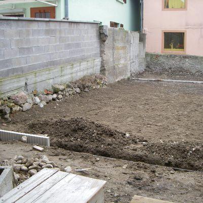 Crépis du mur