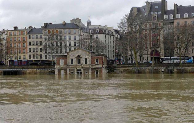 La Seine en crue - 5m50