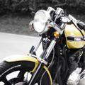 Facs Moto Cafe Racer