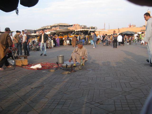 Visite de Marrakech en bus avec guide ,la Koutoubia, Les jardins de Majorelle, Le palais de Bahïa, les souks, la place Jemaa el Fna, le quartier juif. Cette visite est accompagnée d'un délicieux couscous dans un restaurant  marocain.