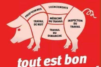 Loi Macron, loi des patrons