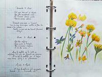 Notes et dessins de Patrick Giroldi.