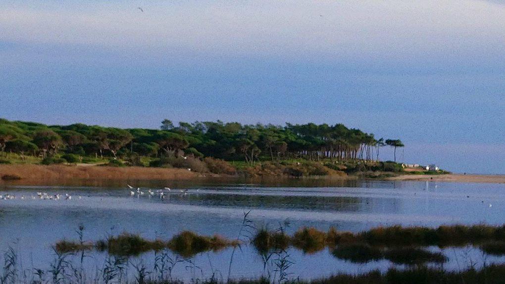 Passer l'hiver en Algarve