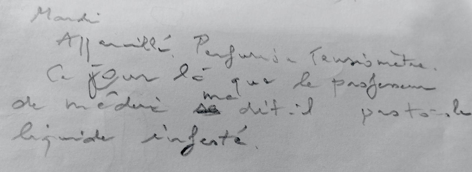 1171 - Journal de l'hôpital (4)