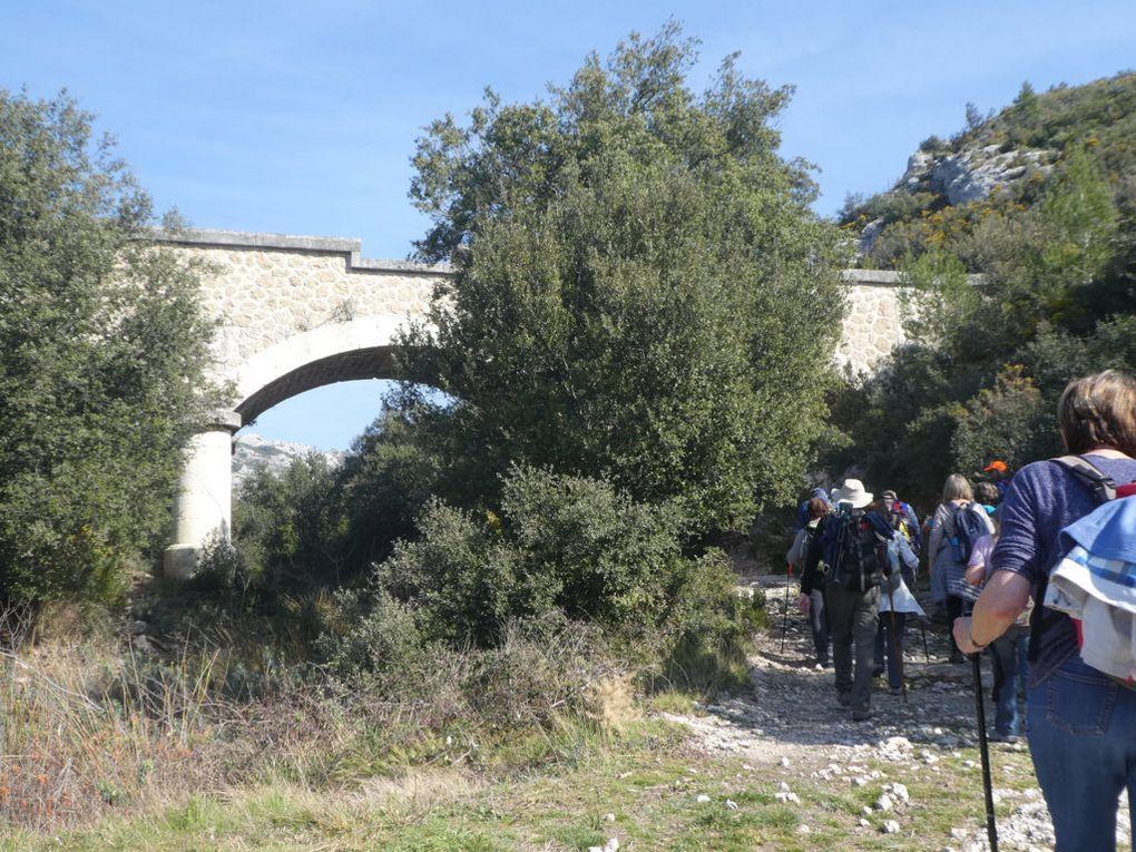 Rando du 25/02/2019 Mouriès au coeur d'une oliveraie