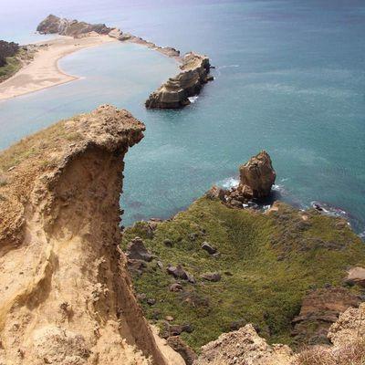 Wairarapa Coast : Castelpoint