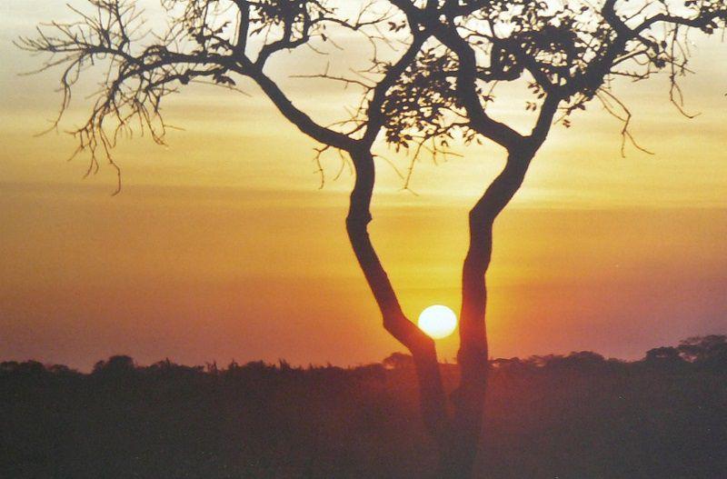 Eclipse Totale de Soleil le 21 juin 2001 en Zambie