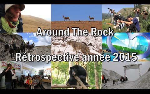 Retrospective of our ecovolunteer missions in 2015