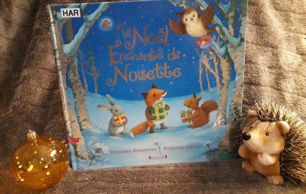 Livre de Noël : Le Noël enchanté de Noisette