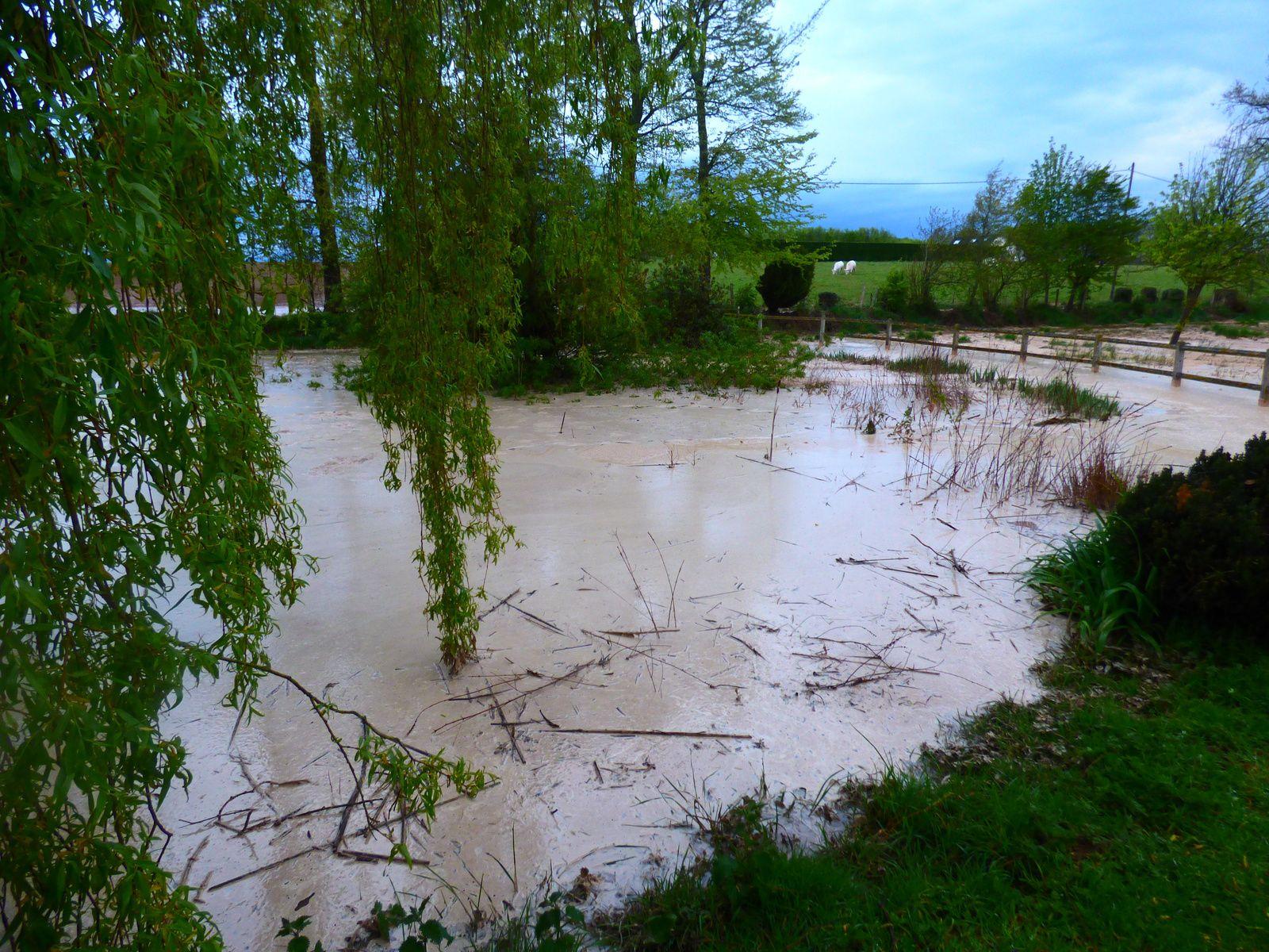 Orage violent et mare polluée à Angerville-la-Martel
