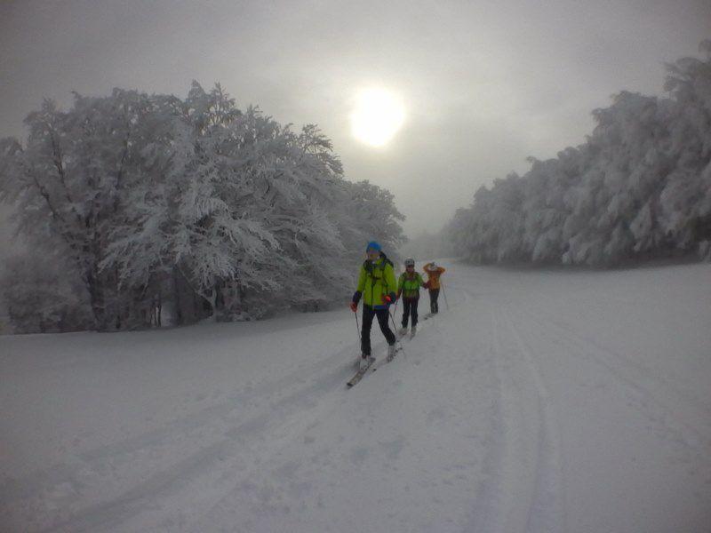 2020: Ski 2e épisode - 20km/3:00