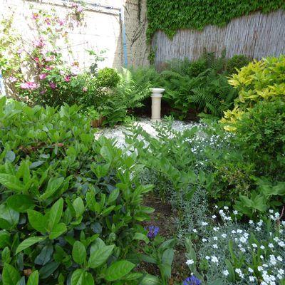 Mon jardin zen.