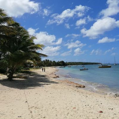 La Guadeloupe à travers ses iles