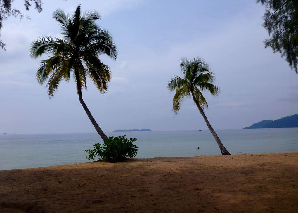Album - Malaisie