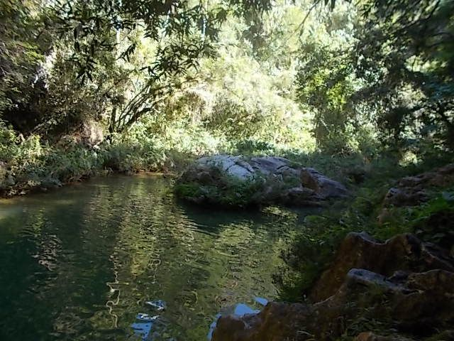 le parc naturel, El nicho, Trinadad la ville, un peintre, un guiterriste, le surrealisme de tous connectes au wifi  a l  exterieur, parc nat Tope Collante , les 2 cascades , peintures enfants ...un concours, hebergement