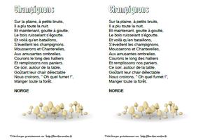 Champignons - Norge - CP-CE1-CE2-CM1-CM 2