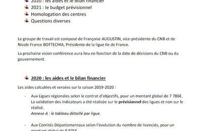 Compte-rendu de la visio conférence entre le CNB et les Ligues/CD - 24/2/2021