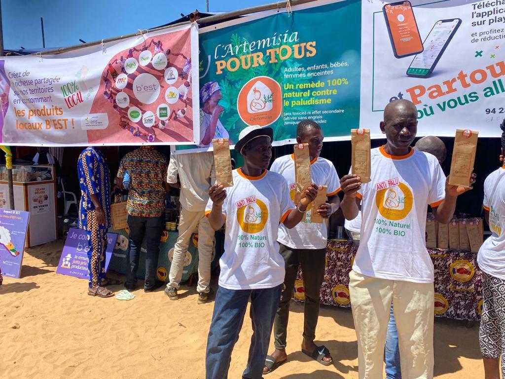 Artemisia contre le paludisme : opération de sensibilisation par la MDA Bénin à l'occasion de Nonvitcha