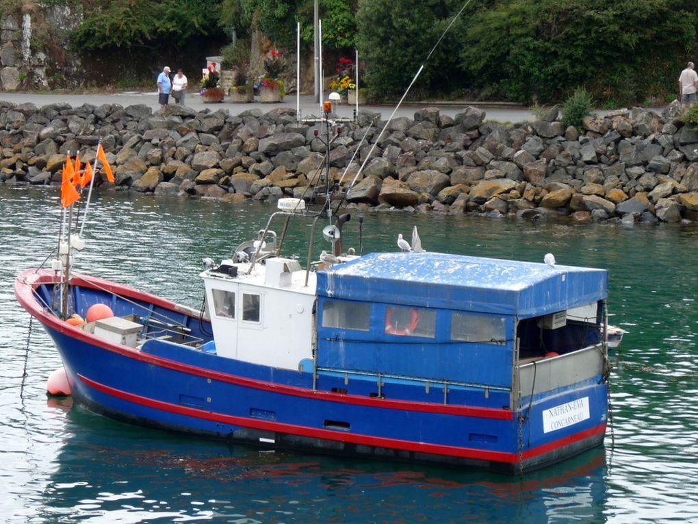 NATHAN - EVA  , CC 424972  , au mouillage dans le port de Doelan , sud finistère