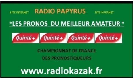 Mon classement journalier au championnat de France des pronostiqueurs  2019