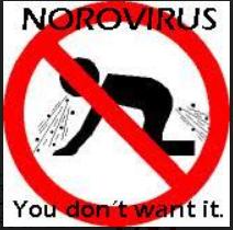 Norovirus et les toilettes des restaurants