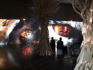 Nouvelle session de l'atelier Espaces [&] Publics au Muséum d'histoire naturelle et au Musée départemental Arles Antique