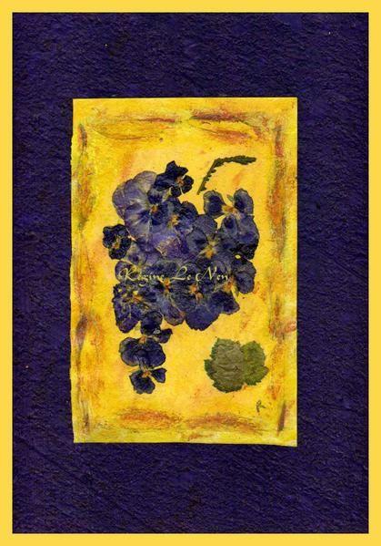 Tableaux - herbiers : Composition de fleurs pressées pour cartes postales, posters, calendrier ou autre support