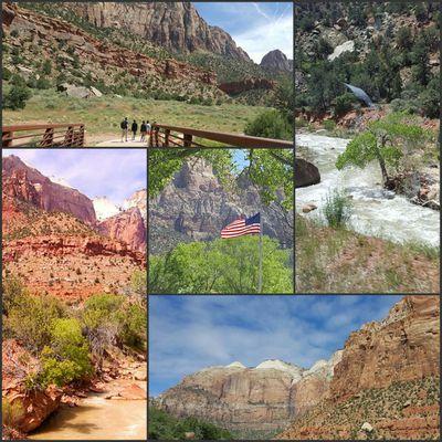 Jour 10 - Zion National Parc