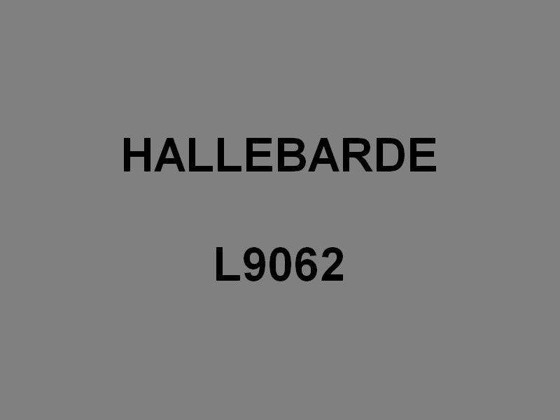 HALLEBARDE  L9062 ,Chaland de Débarquement d'Infanterie et de Chars -CDIC