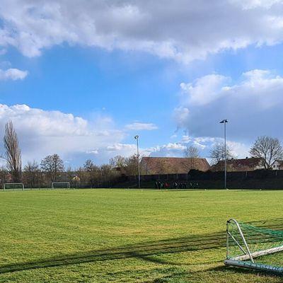 Sportverein Veitshöchheim plant Kunstrasenplatz und neue Verkaufshütte - Mitgliedervotum fehlt noch coronabedingt -  Gemeinderat stellte 25prozentigen Zuschuss (130.000 Euro) zu den Gesamtkosten von 520.000 Euro in Aussicht