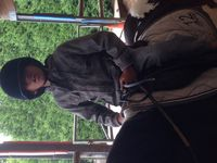 Stage Equitation Comines - 20 au 24 juillet