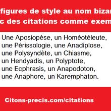 12 figures de style au nom bizarre (Aposiopèse, Homéotéleute, Périssologie, Anadiplose, Polysyndète, etc.), avec des citations comme exemples