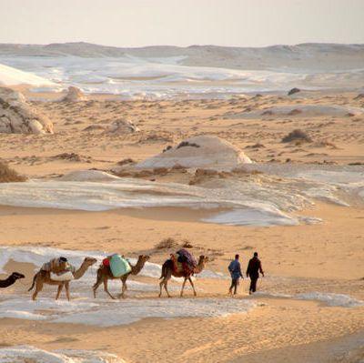 de retour du désert blanc (Egypte)