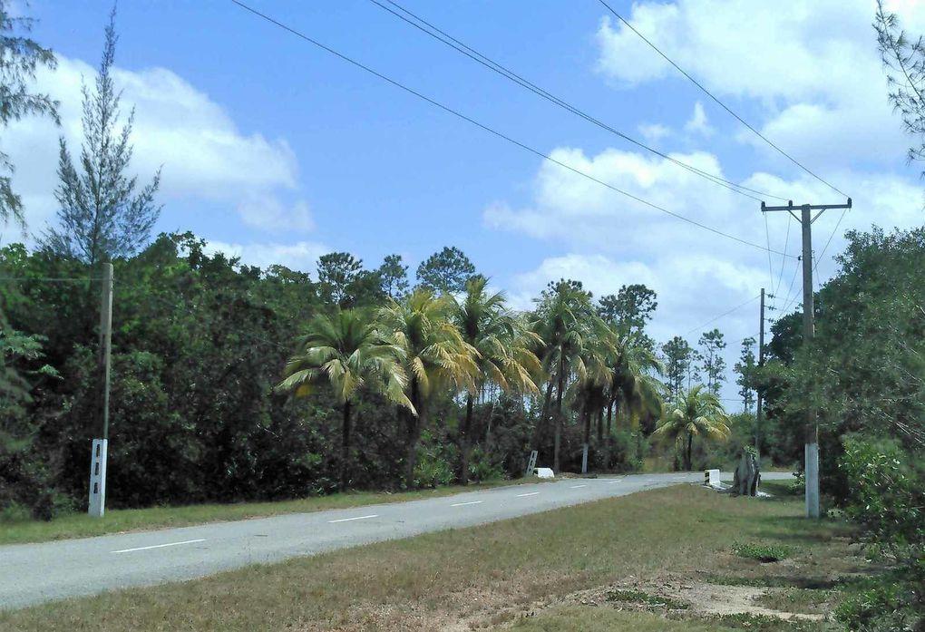L'île des pins :Isla de los Pinos (Juventud)
