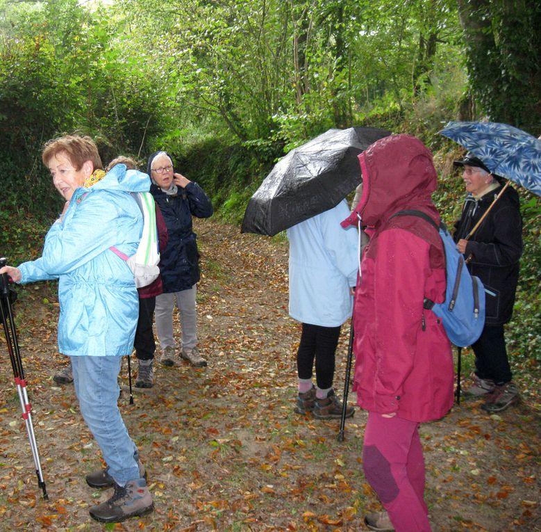Une pluie d'automne au rendez-vous des marcheurs