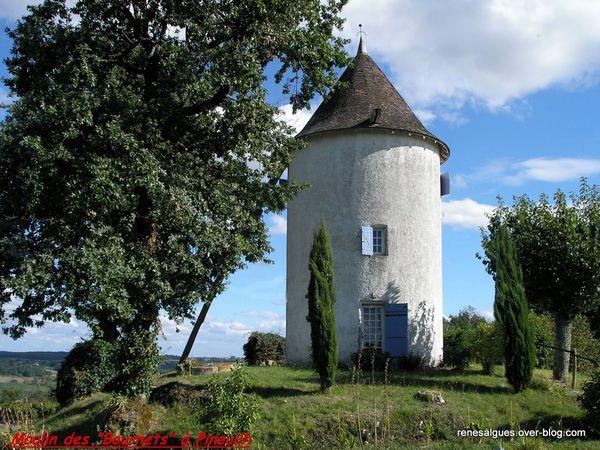 RANDONNÉE DÉCOUVERTE A PINEUILH (Gironde)