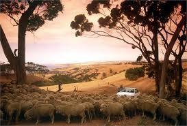 Viticulture in South Australia