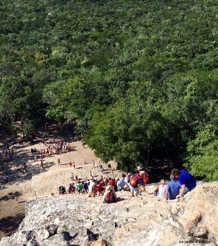escalader( sur la droite) la  pyramide  Nohoch Mul, la plus haute du Yucatan avec 113 marches, admirer la superbe vue sur la jungle et redescendre ( sur la gauche).