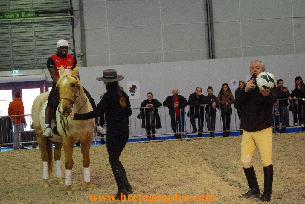 Du 23 mars au 01 avril, se déroulait,la Foire Internationale de Rennes 2013