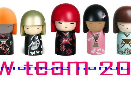 Fête VHB 2011 (La New Team...)