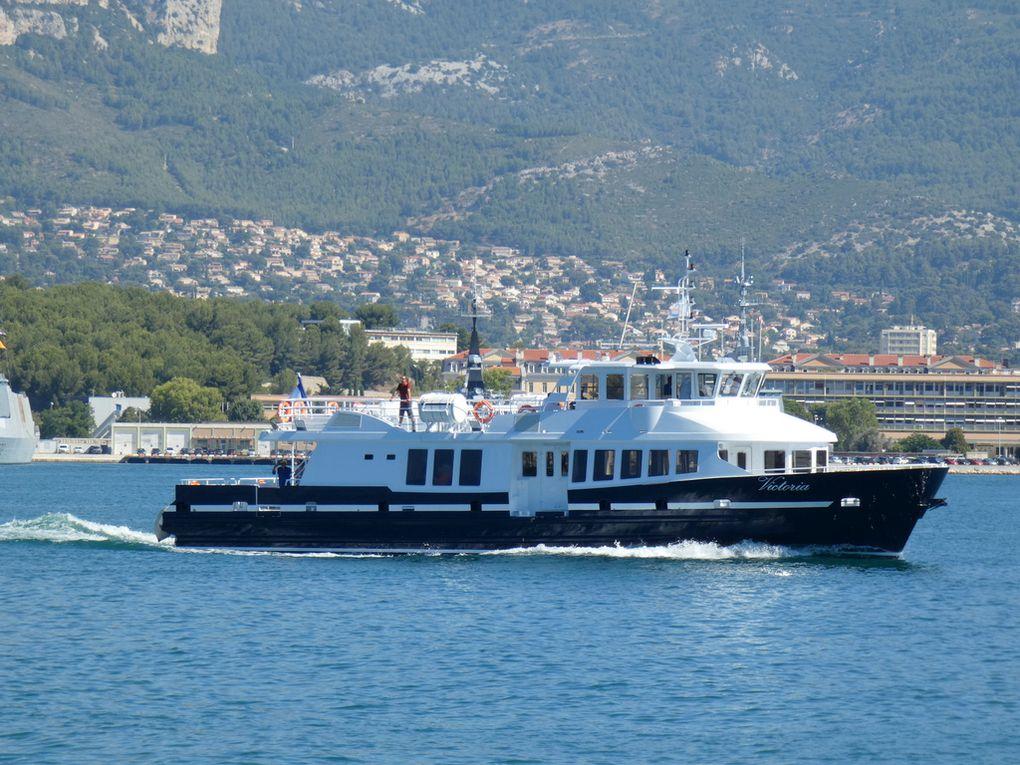 VICTORIA , apparellant de la Seyne sur Mer le 16 juillet 2020